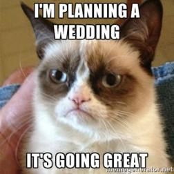 400x400_1446558674746-funny-wedding-planning-memes002